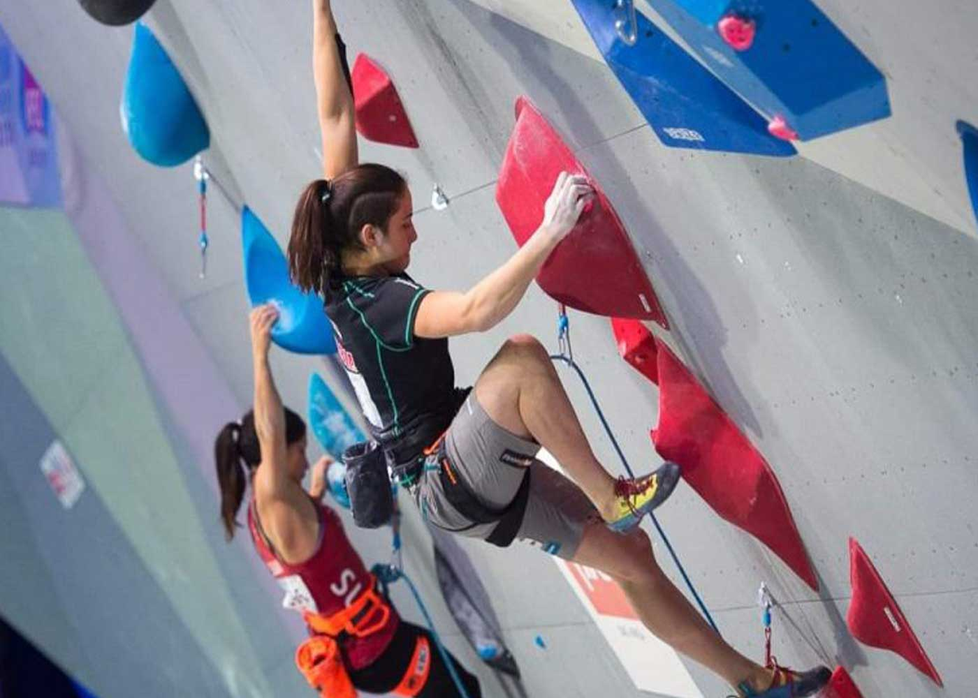 Planinarsko alpinističko ekspedicijski klub Niš